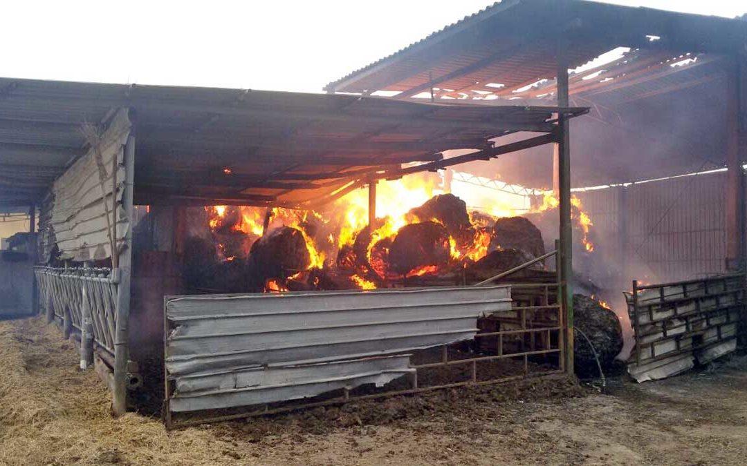 Ardore  una  agricola, trattori e attrezzi avvolti dalle fiamme